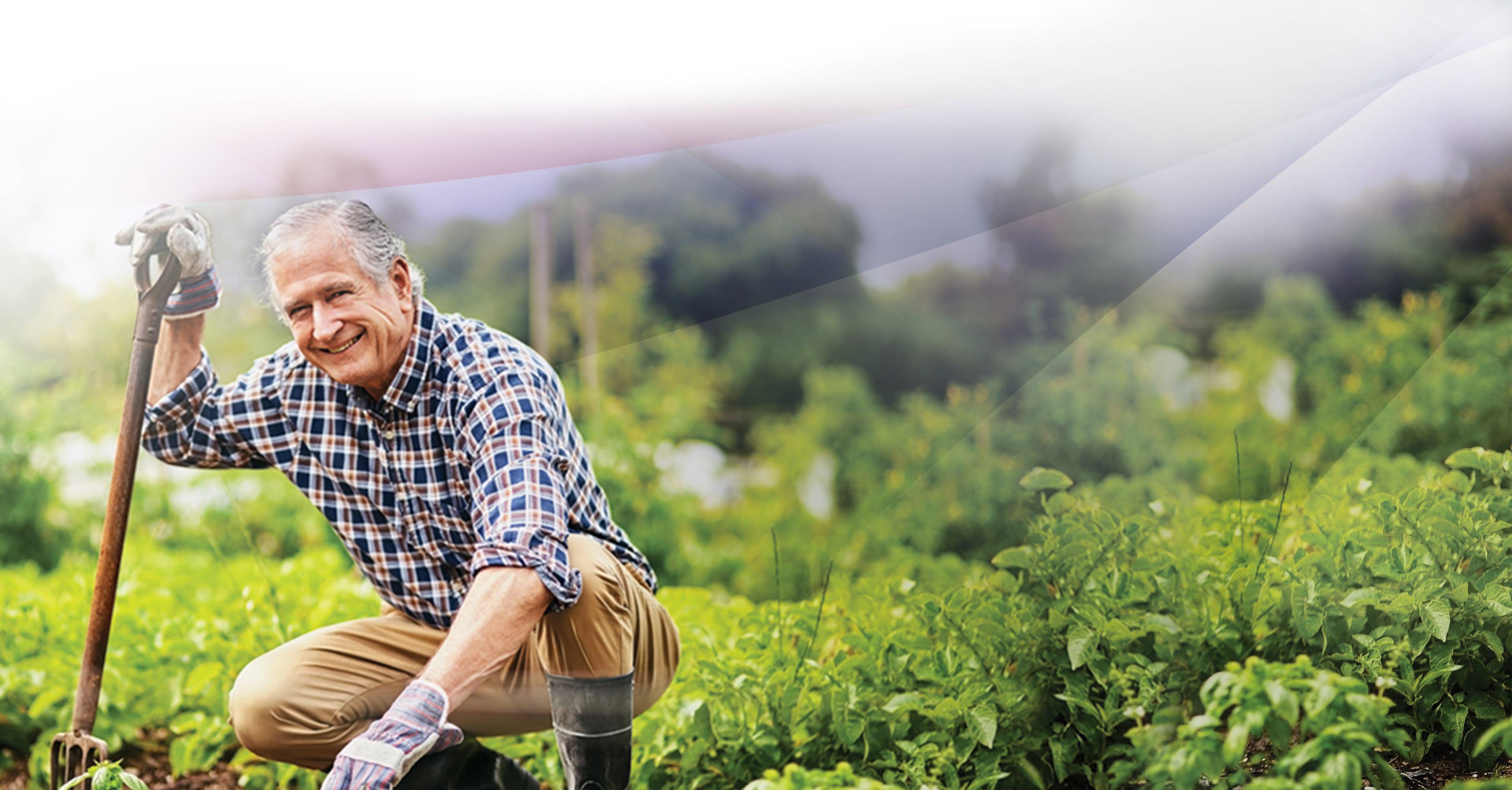 An older man kneeing down to work in his garden